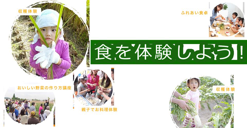 日本食道学協会、収穫体験、おいしい野菜の作り方講座、親子でお料理体験、ふれあい食卓など、子供たちに食を体験させ、正しい食育を伝えたい